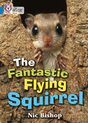 The Fantastic Flying Squirrel