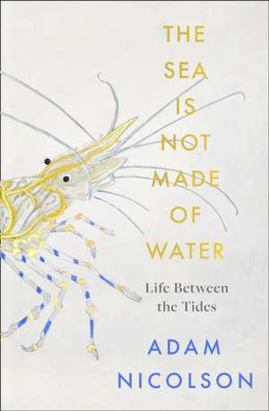 sea is not made of water de Adam Nicolson
