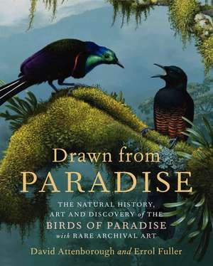 Drawn from Paradise: The Natural History, Art and Discovery of the Birds of Paradise with Rare Archival Art de David Attenborough