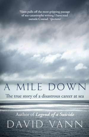 A Mile Down de David Vann