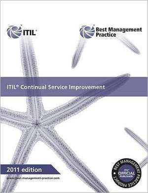 ITIL Continual Service Improvement:  Guidance for Practitioners de The Stationery Office