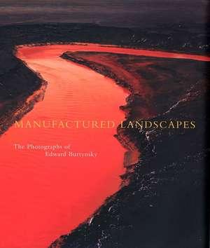 Manufactured Landscapes: The Photographs of Edward Burtynsky de Lori Pauli