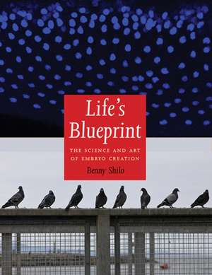 Life′s Blueprint – The Science and Art of Embryo Creation
