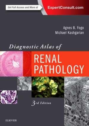 Diagnostic Atlas of Renal Pathology