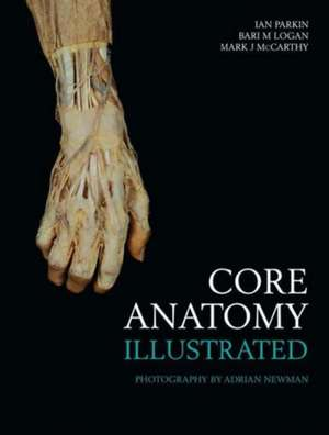 Core Anatomy - Illustrated imagine