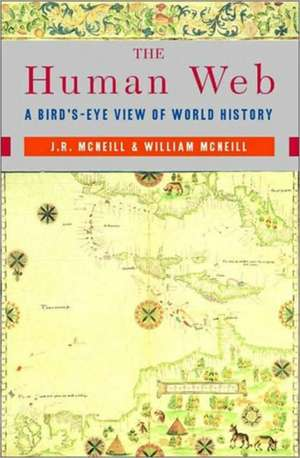 Human Web – A Bird′s–Eye View of World History