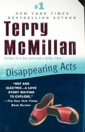 Disappearing Acts de Terry McMillan