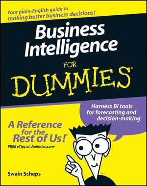 Business Intelligence For Dummies imagine
