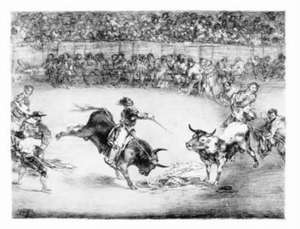 Great Goya Etchings:  The Proverbs, the Tauromaquia and the Bulls of Bordeaux de Francisco Goya