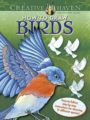 Creative Haven How to Draw Birds