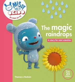The Magic Raindrops