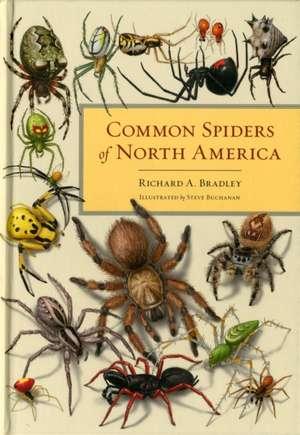 Common Spiders of North America de Richard Bradley