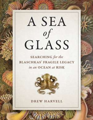 A Sea of Glass – Searching for the Blaschkas` Fragile Legacy in an Ocean at Risk