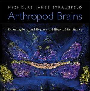Arthropod Brains – Evolution, Functional Elegance, and Historical Significance imagine