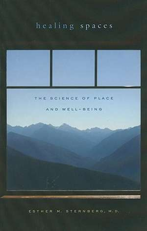 Healing Spaces – The Science of Place and Well–Being de Esther M. Sternberg