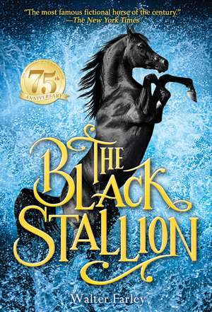The Black Stallion