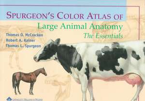 Spurgeon′s Color Atlas of Large Animal Anatomy