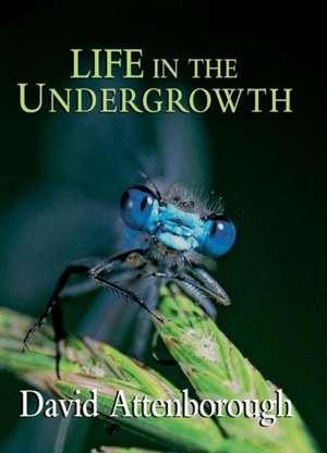 Life in the Undergrowth de David Attenborough