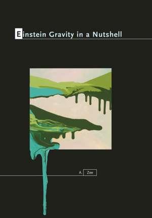 Einstein Gravity in a Nutshell imagine