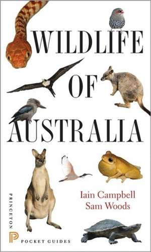 Wildlife of Australia de Iain Campbell