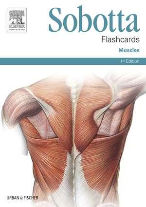 Sobotta Flashcards Muscles: Muscles de Lars Bräuer