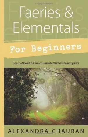 Faeries & Elementals for Beginners imagine