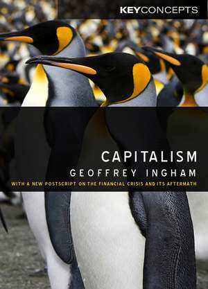 Capitalism: With a New Postscript on the Financial Crisis and Its Aftermath de Geoffrey Ingham