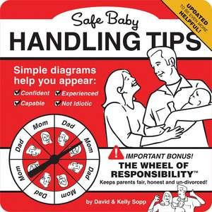 Safe Baby Handling Tips de David Sopp
