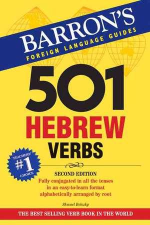 501 Hebrew Verbs de S. Bolozky