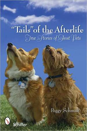 """""""Tails"""" of the Afterlife imagine"""