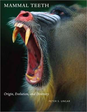 Mammal Teeth – Origin, Evolution, and Diversity