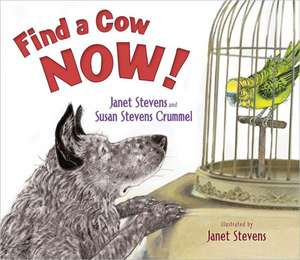 Find a Cow Now! de Janet Stevens