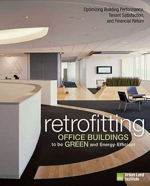 Retrofitting Buildings to Be Green and Energy-Efficient imagine