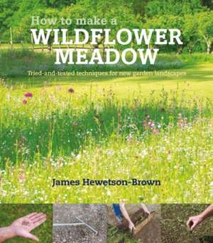 How to Make a Wildflower Meadow imagine