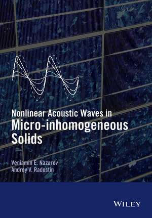Nonlinear Acoustic Waves in Micro–inhomogeneous Solids