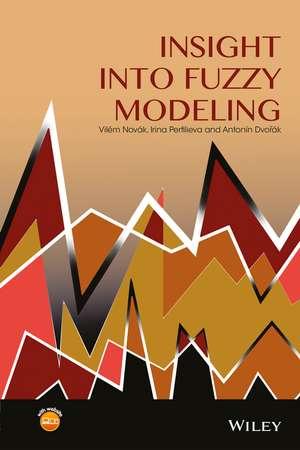 Insight into Fuzzy Modeling