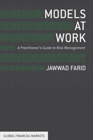 Models at Work: A Practitioner's Guide to Risk Management de J. Farid