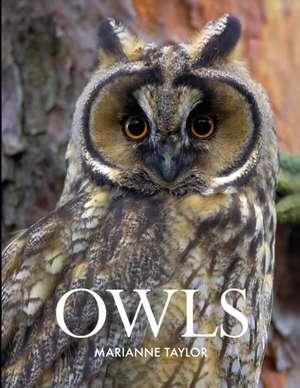 Owls de Marianne Taylor