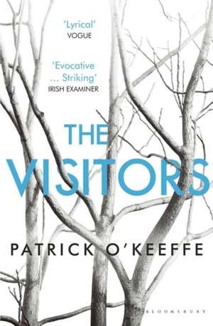 The Visitors de Patrick O'Keeffe