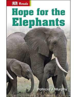 Hope for the Elephants