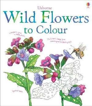 Wild Flowers to Colour imagine