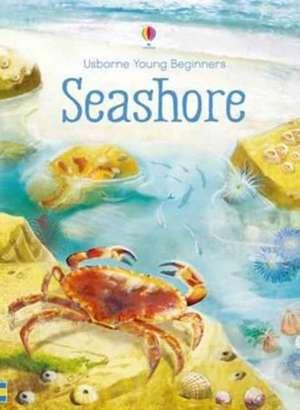 Young Beginners Seashore