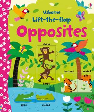 Lift-the-flap Opposites de Felicity Brooks