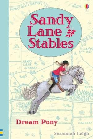 Sandy Lane Stables: Dream Pony