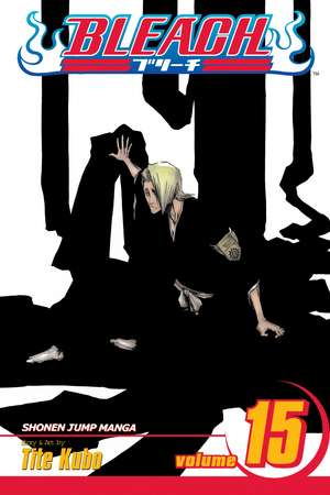 Bleach, Volume 15