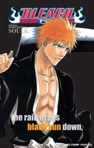 Bleach SOULs. Official Character Book de Tite Kubo
