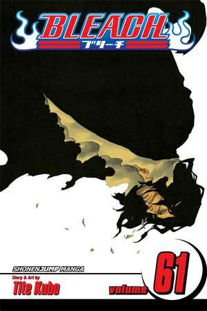Bleach, Volume 61
