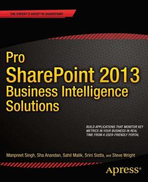 Pro SharePoint 2013 Business Intelligence Solutions imagine