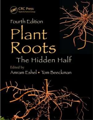 Plant Roots imagine