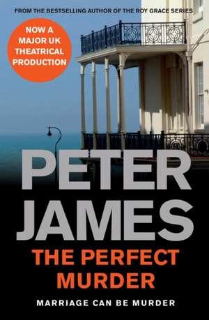 The Perfect Murder de Peter James